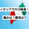 【2020年9月】イタリアでPCR検査受けた時の詳細